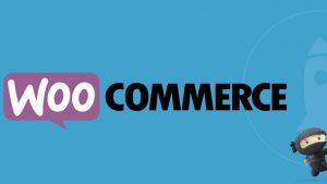 XRPL Labs, WooCommerce E-Ticaret'in 3 Milyon Çevrimiçi Mağazasına XRP Ödeme Eklentisini Getirmeyi Hedefliyor