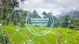 Turizm Sektörü Blockchain Teknolojisinden Nasıl Yararlanabilir